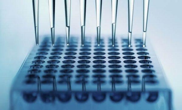 13997760_m-1-600x364 【ペルソナ育毛剤】遺伝子レベルでわかるって本当?詳しく教えて!
