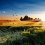 朝の習慣を変えるだけで人生が変わる!9つのやっておきたい朝の習慣