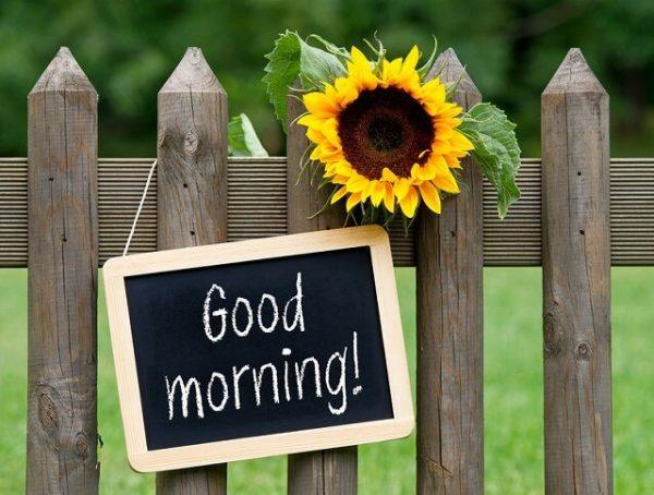 22836778_s-1-600x454 朝の習慣を変えるだけで人生が変わる!9つのやっておきたい朝の習慣