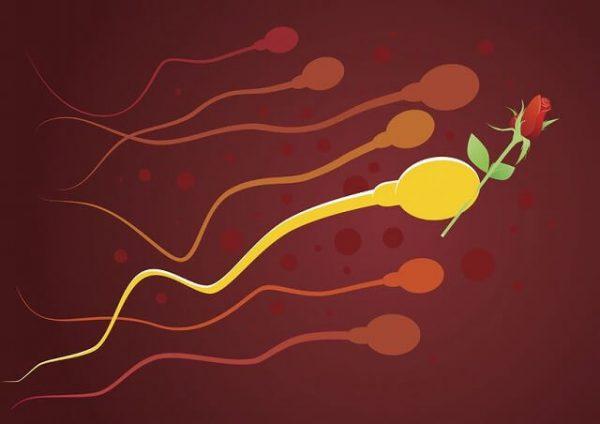 s-8045320_m-600x424 「妊活」を終わらせるために…男性としてやっておくべき5つのこと